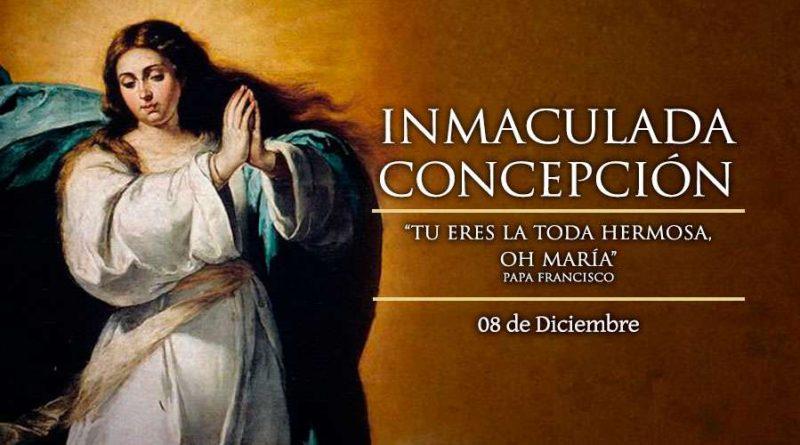 Celebramos la Inmaculada Concepción de María